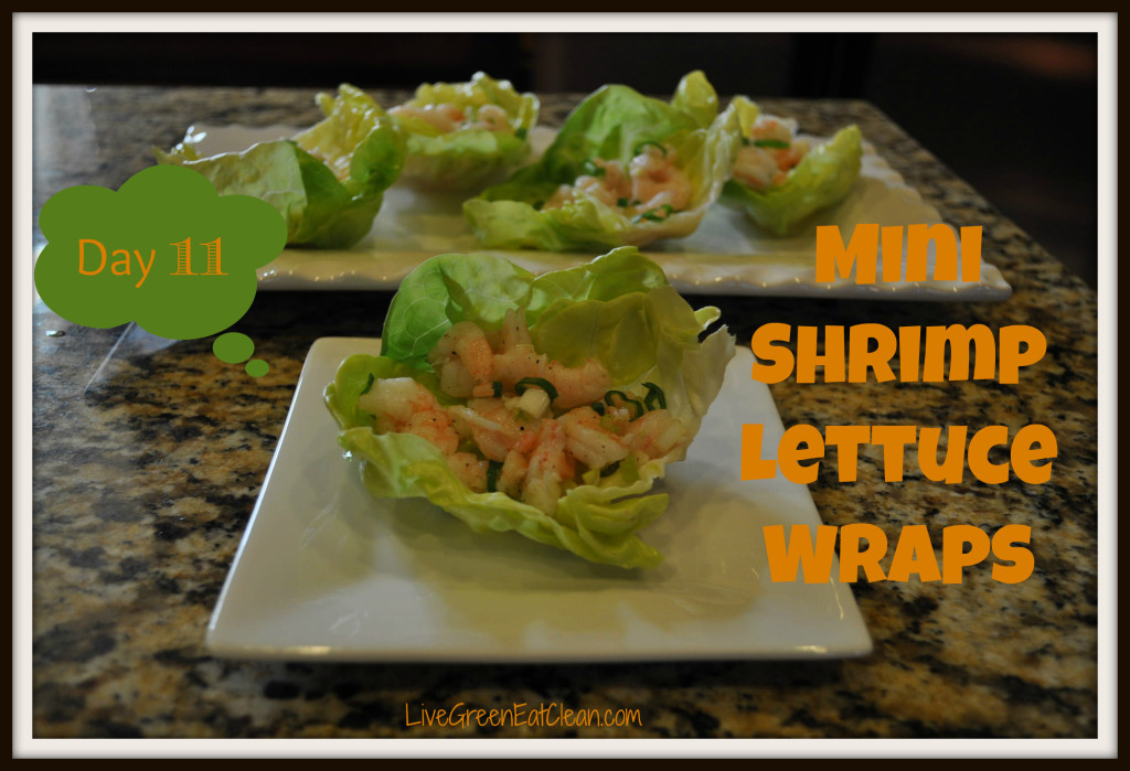 Day 11 Mini Shrimp Lettuce Wrap Blog