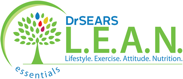 LEAN-Essentials-logo